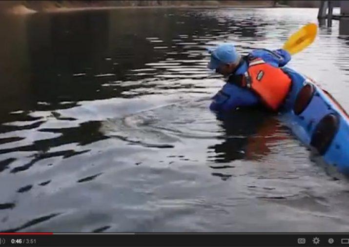 New kayak stroke, The Heghighi